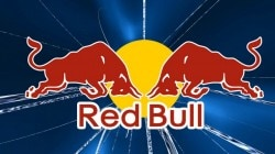 Red Bull KZ Can 025 л*24